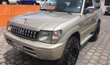 El aceite para el volkswagen tiguan 2.0 gasolina